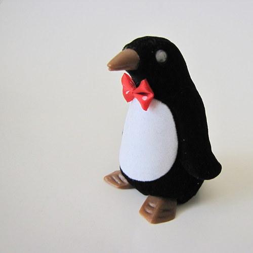 Tučňáček  -   sametové krabičky
