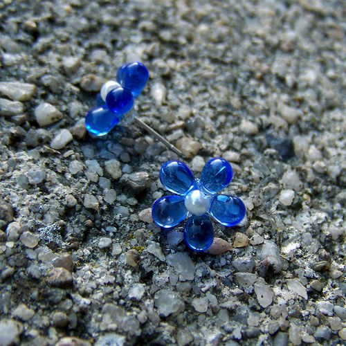 Modrá kvítka
