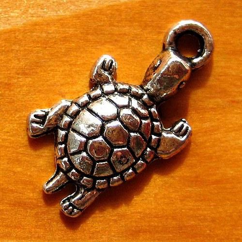 Želva - 2ks - Malá