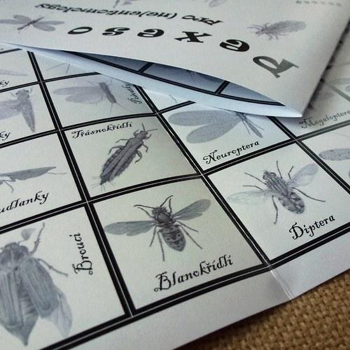 Cestovní PEXESO pro (ne)entomology