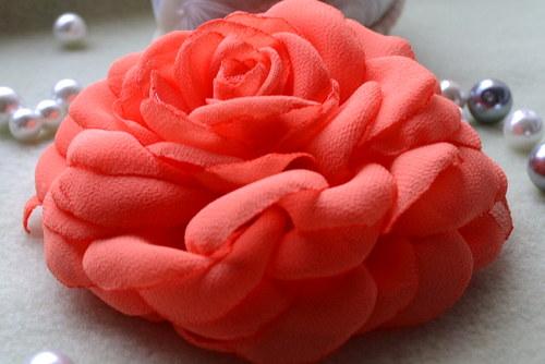Broskvová růže