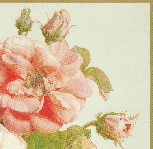 Ubrousek - růže velké