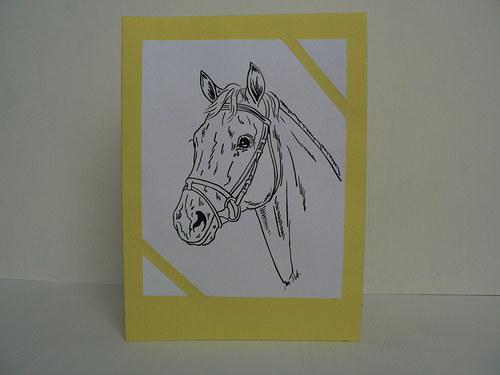 Žluté přání s koníkem