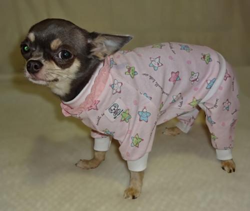 Pyžamko pre psíka XS