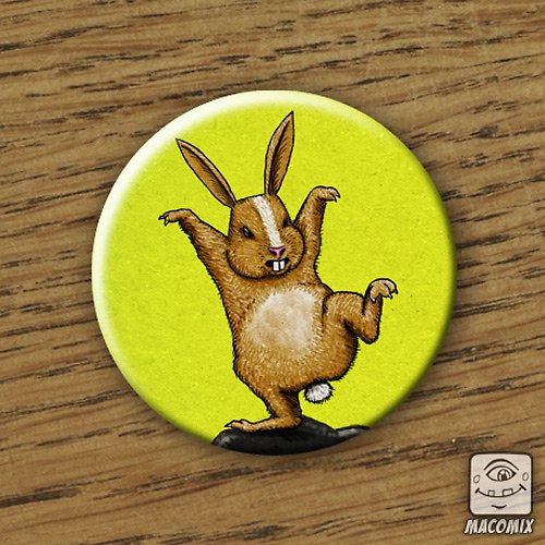 Kungfu rabbit - placka