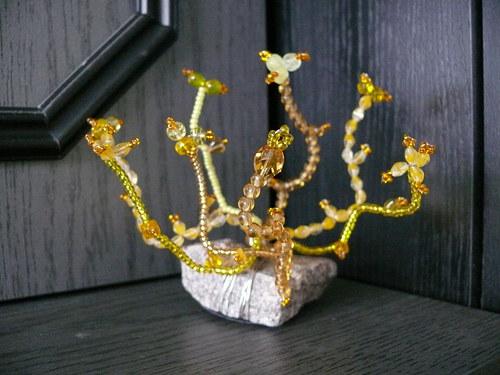 Květena ze skály stvořená - skalnička žlutá