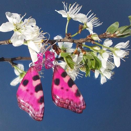Náušnice motýl - mot60