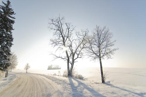 Zimní 1