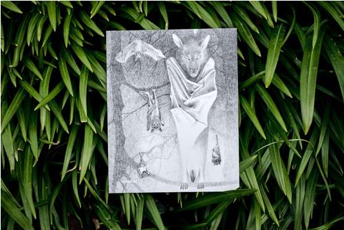 Kaloň v šerosvitu • pohlednice bílá lesklá