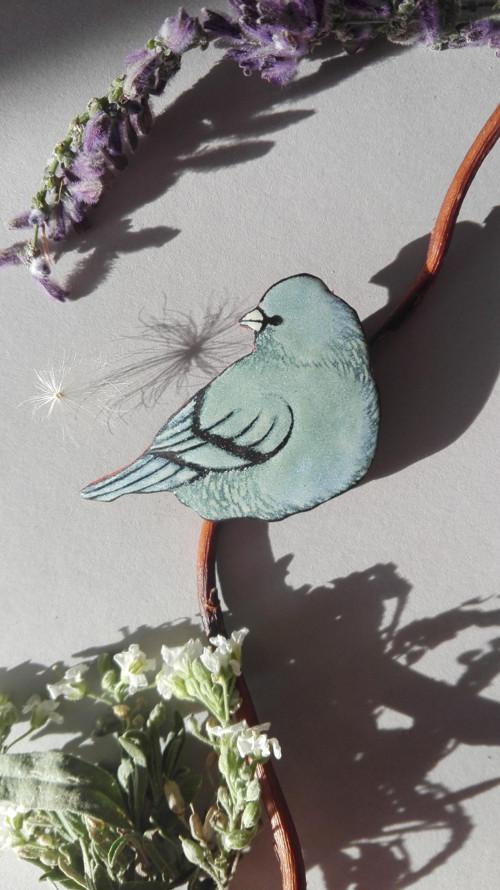 Zelenomodrý ptáček