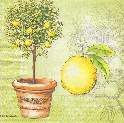 Ubrousek - citrony