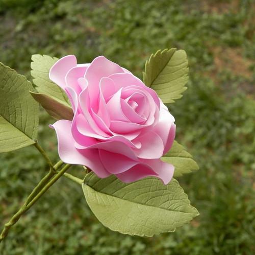 Růže-dekorace