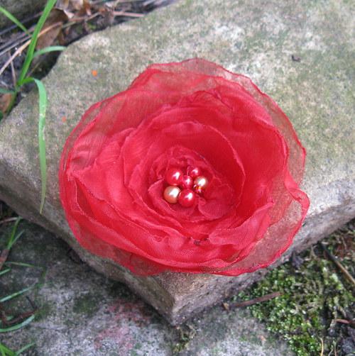 Krásně se červená 2