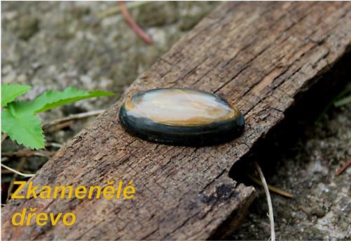 Zkamenělé dřevo kabošon