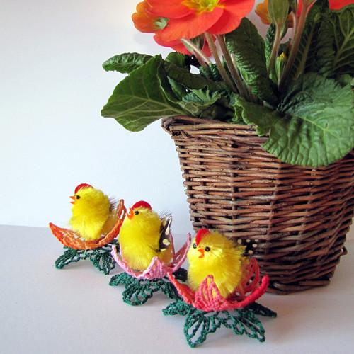 Kuře v květu