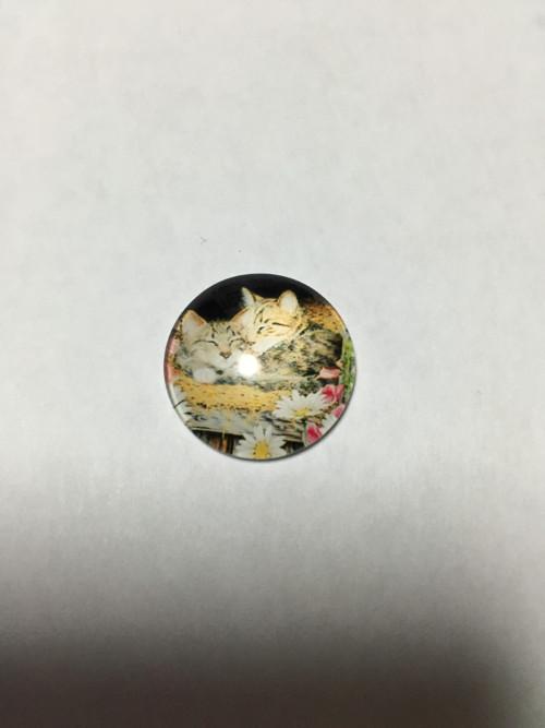 Kabošon kočka 20mm
