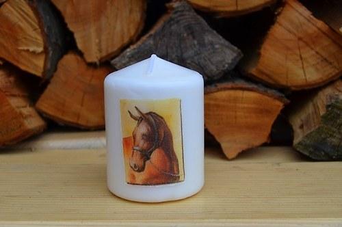 Svíčka - koně