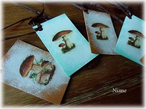 Cedulky na houbičky - sada 1