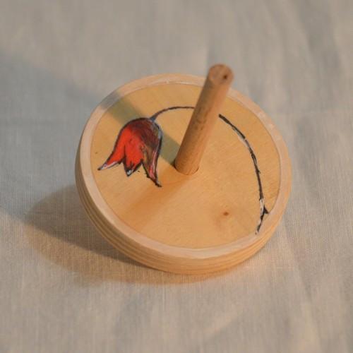 Káča malovaná - tulipán