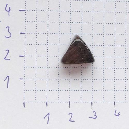 Zkamenělé dřevo-trojhránek
