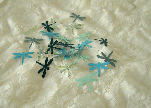 Výseky z raznice - Modré vážky