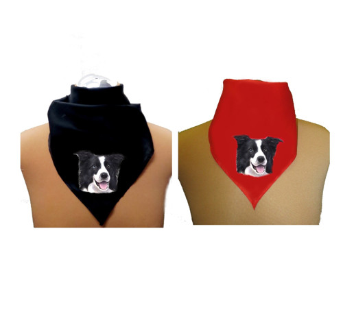 border kolie šátek