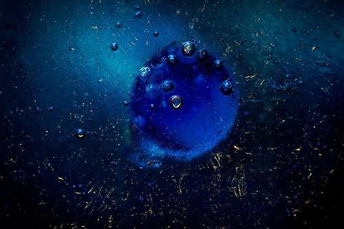 Podmořský svět 1.