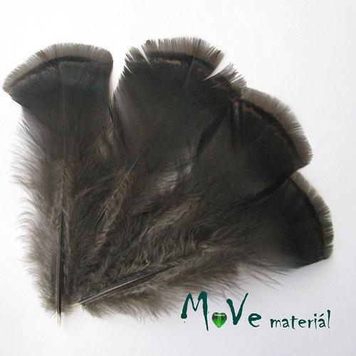 Krocaní peří ocasní délka 16-18cm,4ks přírodní