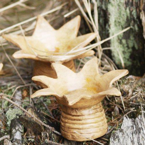 Svícínek - hvězda