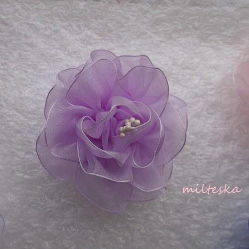 jemně fialový květ