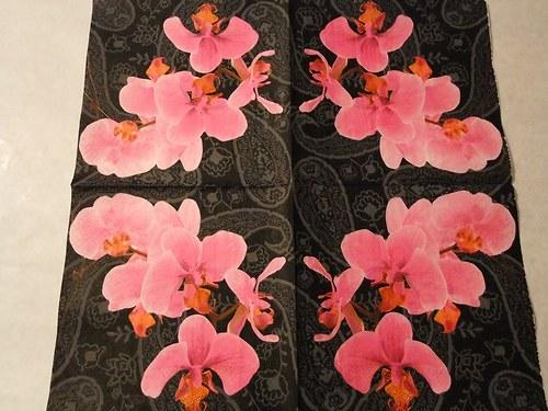 Květiny - orchidea 5.