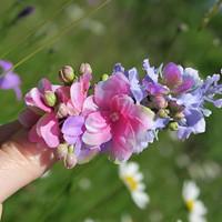 Květinová spona