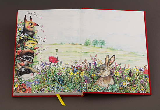 """Zadní předsádka knihy """"Příběhy ze staré zahrady"""""""