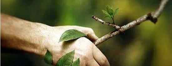 Soulad a spolupráce s přírodou