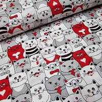 kočky červené